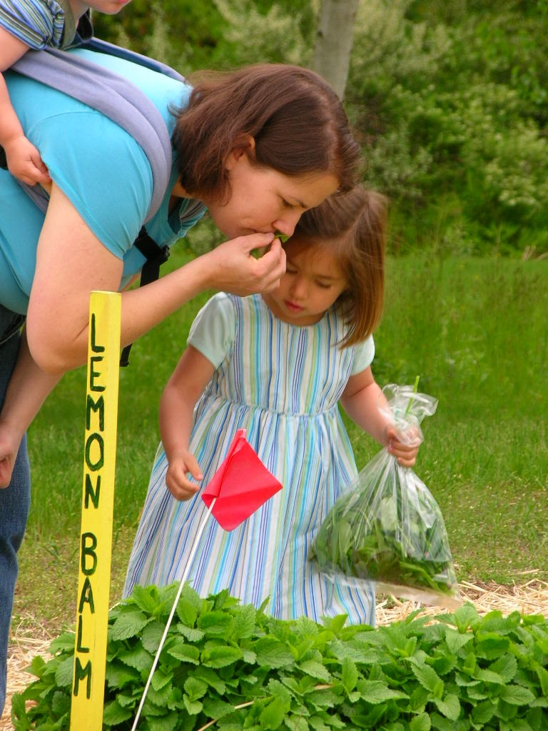 Pick-Your-Own at a CSA