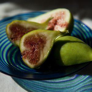 figs-6462.jpg