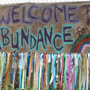 abundance banner.PNG