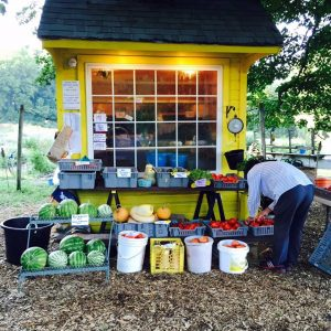 sunset farmstand.jpg