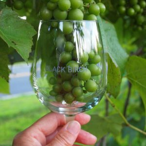 grapes in glass.jpg