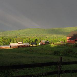 rainbow_farm_585w.jpg
