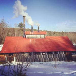 snow drums sugar house.JPG