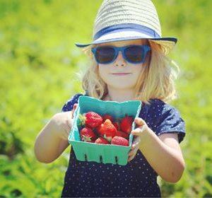 Clare-Strawberry.2.jpg