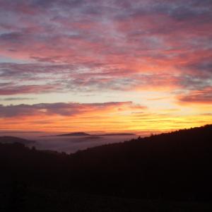 nice sunrise (1).png