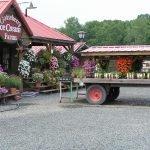Gooseberry Farm Front