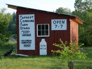 A CISA Local Hero member, Taproot Commons Farm is thriving on land farmed by the Warner family for generations (Taproot Commons photo)