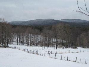 View of Brushy Mountain from Teawaddle Farm, Leverett  (Gwyn Mitchell photo)