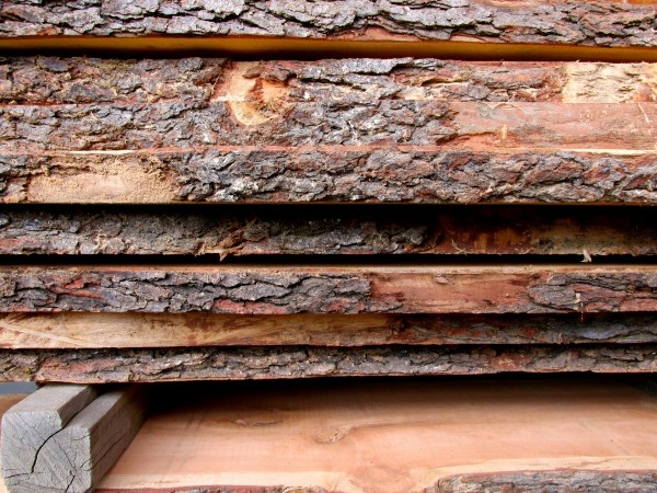 Local live edge slabs from Forest Products Associates