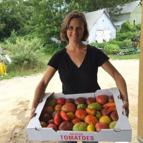 Caroline pam kitchen garden tomatoes
